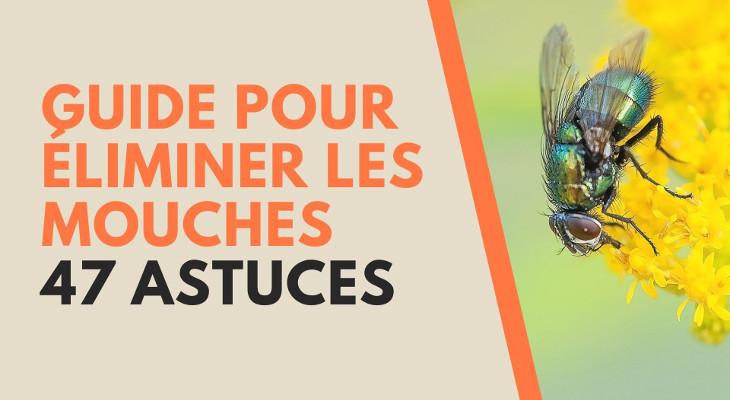 47 astuces pour se débarrasser des mouches